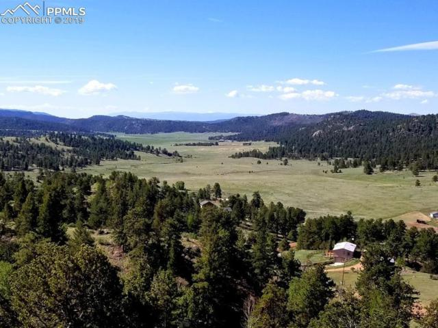 293 Eagleview Circle, Florissant, CO 80816 (#4057141) :: 8z Real Estate