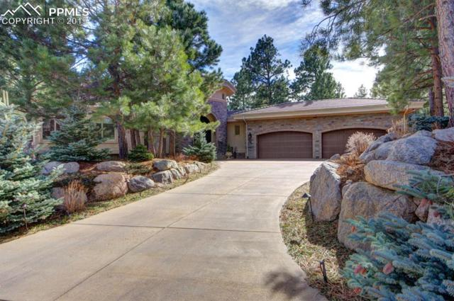 740 Silver Oak Grove, Colorado Springs, CO 80906 (#4062626) :: Tommy Daly Home Team