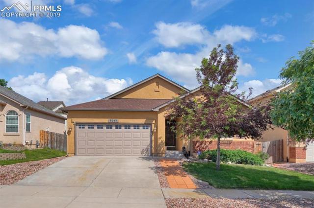 7017 Cobblecreek Drive, Colorado Springs, CO 80922 (#4065287) :: The Peak Properties Group