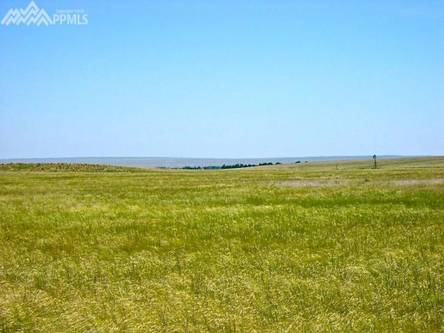 20045 Joyful View, Peyton, CO 80831 (#4068553) :: 8z Real Estate