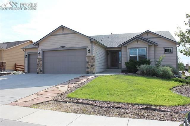 7864 Antelope Meadows Circle, Peyton, CO 80831 (#4069090) :: The Kibler Group