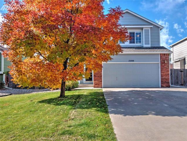 7594 Old Spec Road, Peyton, CO 80831 (#4069689) :: 8z Real Estate