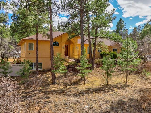 7405 Winding Oaks Drive, Colorado Springs, CO 80919 (#4071413) :: The Daniels Team