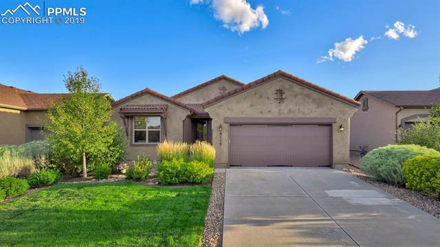 8115 Hunter Peak Trail, Colorado Springs, CO 80924 (#4074269) :: 8z Real Estate