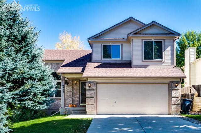 6541 Sproul Lane, Colorado Springs, CO 80918 (#4074293) :: 8z Real Estate
