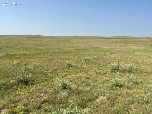 2 Kobilan Road, Calhan, CO 80808 (#4074406) :: 8z Real Estate
