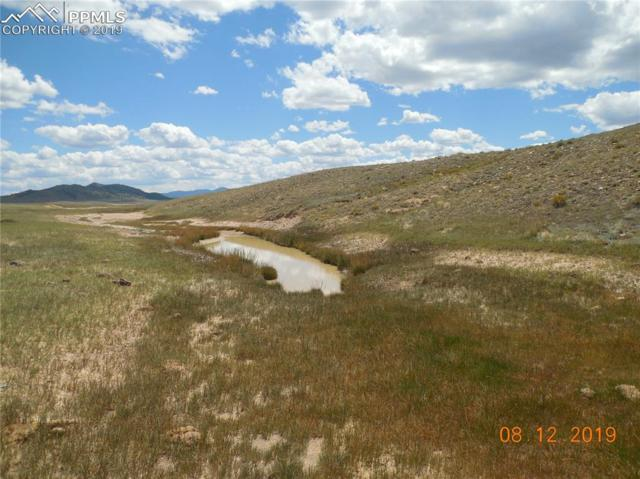 1735 Lakeview Road, Hartsel, CO 80449 (#4075076) :: CC Signature Group