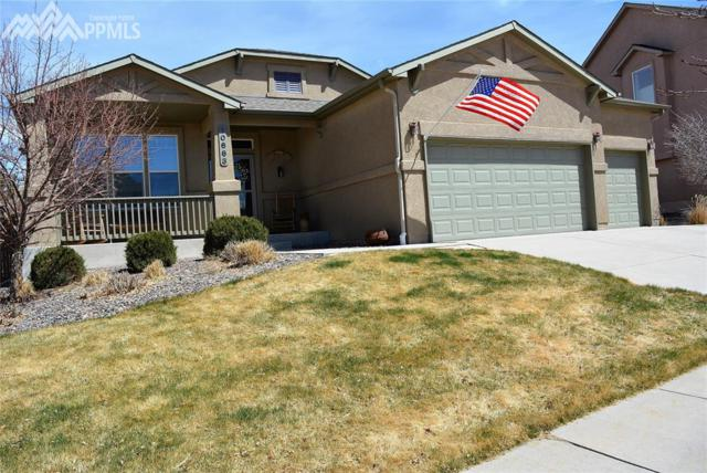 10663 Black Kettle Way, Colorado Springs, CO 80908 (#4076135) :: 8z Real Estate