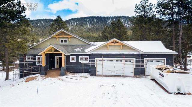 680 Chipmunk Drive, Woodland Park, CO 80863 (#4077679) :: Action Team Realty