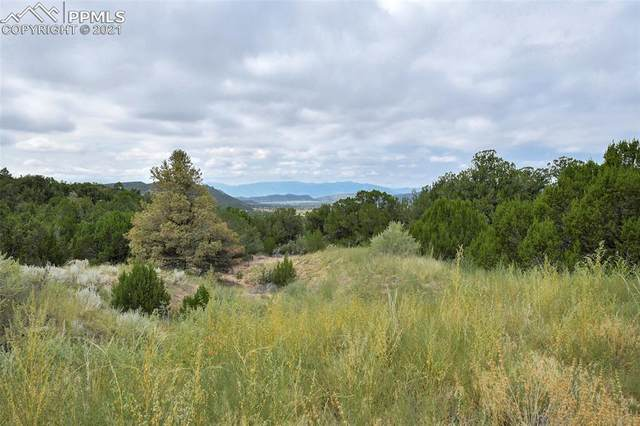 6650 County Road 132, Penrose, CO 81240 (#4079842) :: Action Team Realty
