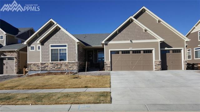 8448 Boulder Banks Court, Colorado Springs, CO 80927 (#4084275) :: The Peak Properties Group