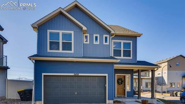 6404 John Muir Trail, Colorado Springs, CO 80927 (#4086116) :: Finch & Gable Real Estate Co.