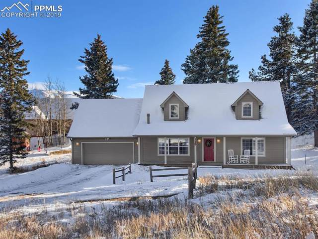 113 Allison Place, Divide, CO 80814 (#4087177) :: The Peak Properties Group