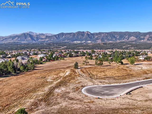 390 Silver Rock Place, Colorado Springs, CO 80921 (#4088790) :: 8z Real Estate