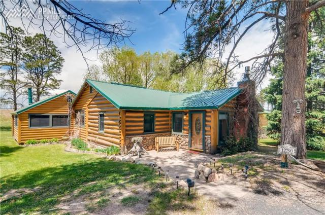 12790 Black Forest Road, Colorado Springs, CO 80908 (#4094682) :: The Hunstiger Team