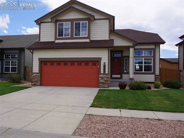 6837 Shimmering Leaf Road, Colorado Springs, CO 80906 (#4095498) :: The Treasure Davis Team