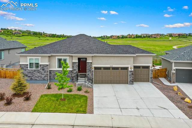 7175 Greenwater Circle, Castle Rock, CO 80108 (#4095802) :: Fisk Team, eXp Realty