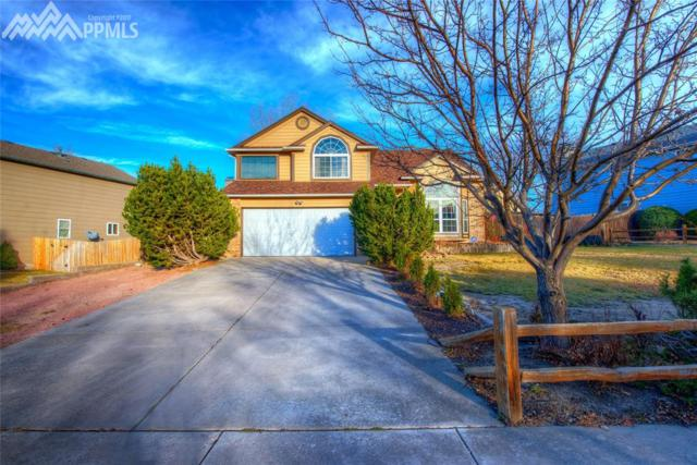 4645 Purcell Drive, Colorado Springs, CO 80922 (#4099062) :: 8z Real Estate