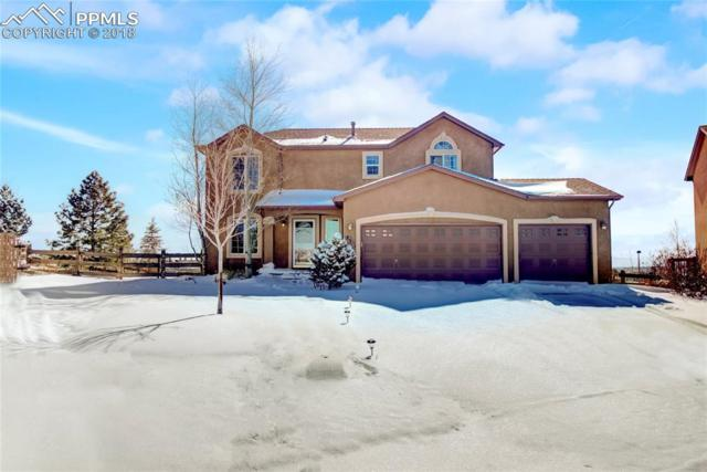 831 Merrimack River Way, Monument, CO 80132 (#4099910) :: The Peak Properties Group