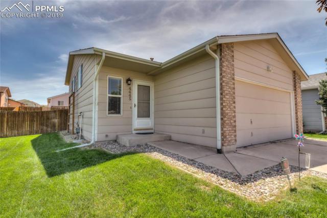 4445 Witches Hollow Lane, Colorado Springs, CO 80911 (#4100005) :: Colorado Team Real Estate