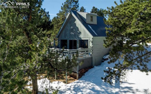 2064 Pikes Peak Drive, Divide, CO 80814 (#4100407) :: 8z Real Estate