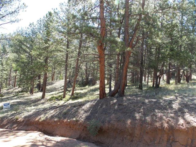 564 Lookout Road, Cripple Creek, CO 80813 (#4105052) :: 8z Real Estate