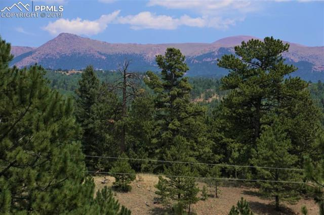 86 Molly Kathleen Drive, Cripple Creek, CO 80813 (#4107518) :: Harling Real Estate