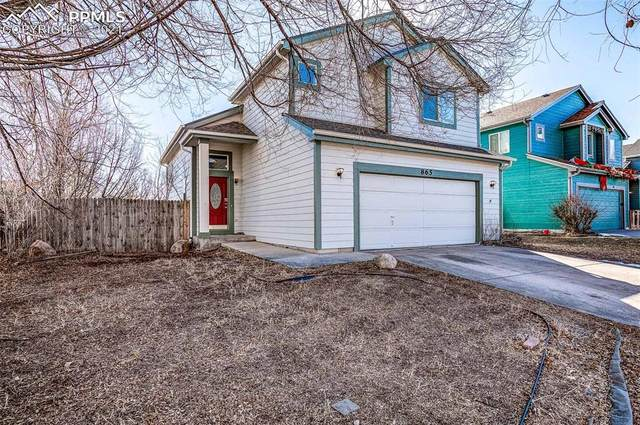 865 Ancestra Drive, Fountain, CO 80817 (#4107605) :: 8z Real Estate
