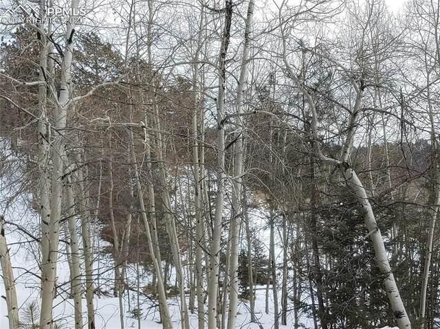 255 Pinon Lane, Florissant, CO 80816 (#4110350) :: 8z Real Estate