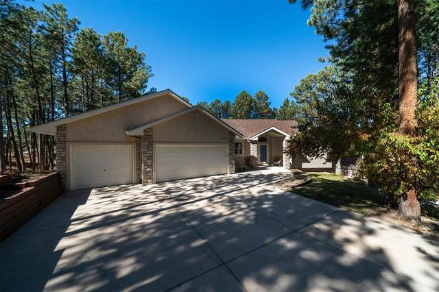 18370 Lazy Summer Way, Monument, CO 80132 (#4110932) :: Springs Home Team @ Keller Williams Partners