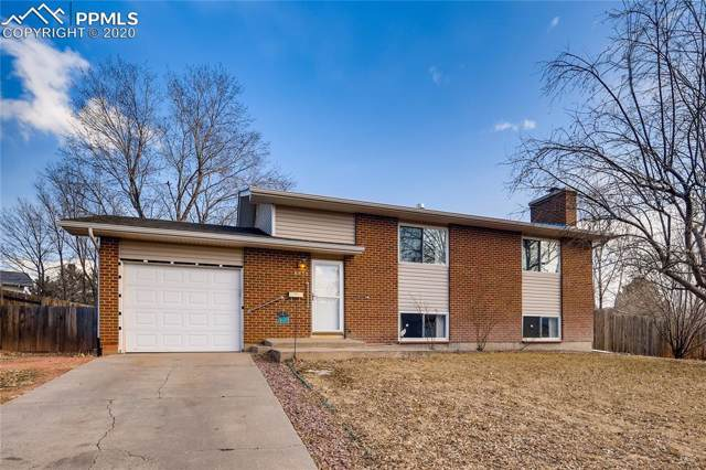 6853 Fielding Circle, Colorado Springs, CO 80911 (#4112159) :: Tommy Daly Home Team