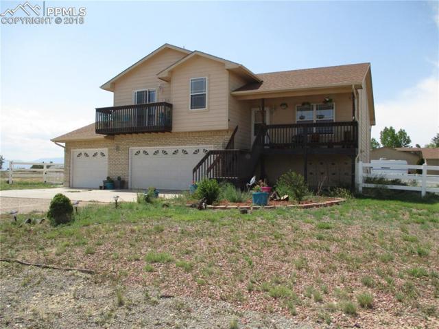 1123 Yerba Santa Drive, Pueblo West, CO 81007 (#4114054) :: The Treasure Davis Team