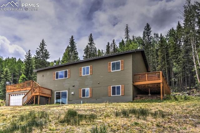 66 Bernhard Terrace, Cripple Creek, CO 80813 (#4115287) :: Compass Colorado Realty