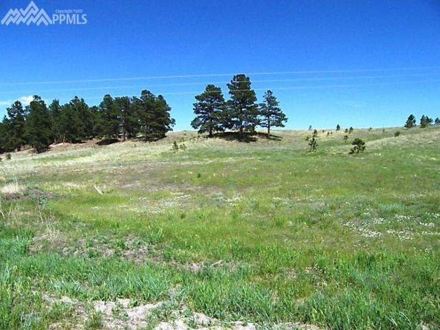 19071 Malmsbury Court, Monument, CO 80132 (#4116025) :: The Dunfee Group - Keller Williams Partners Realty