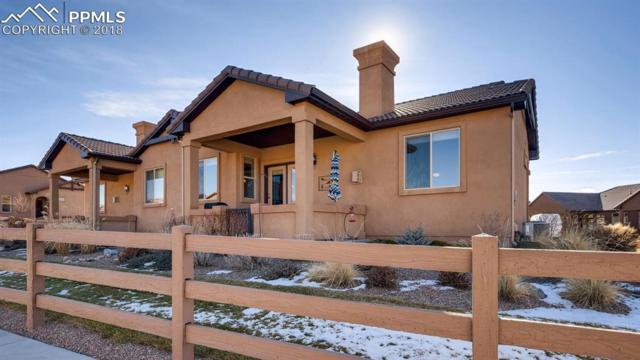 13224 Cake Bread Heights, Colorado Springs, CO 80921 (#4122668) :: The Hunstiger Team