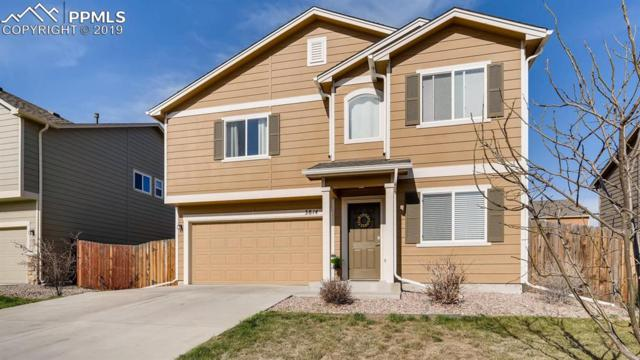 3814 Winter Sun Drive, Colorado Springs, CO 80925 (#4125016) :: Tommy Daly Home Team