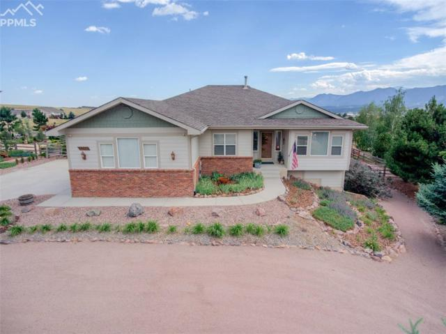 1265 Bowstring Road, Monument, CO 80132 (#4125154) :: The Daniels Team
