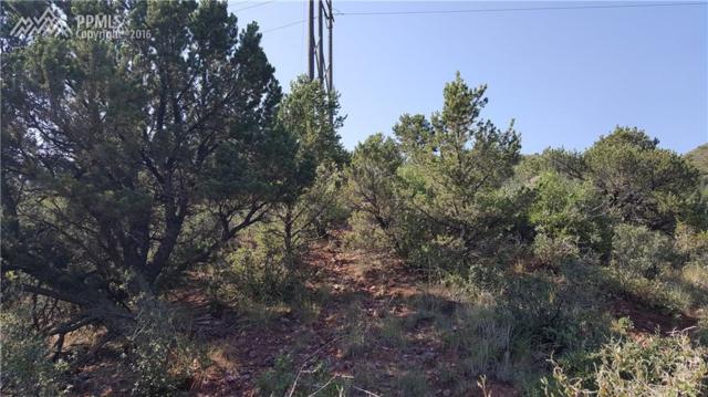 Puma Path, Manitou Springs, CO 80829 (#4127253) :: 8z Real Estate