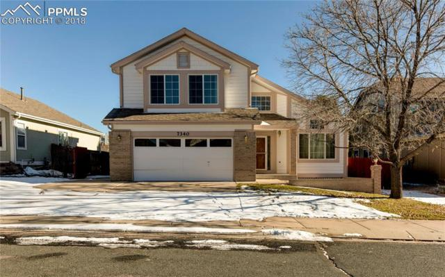 7340 Cotton Drive, Colorado Springs, CO 80923 (#4128161) :: 8z Real Estate