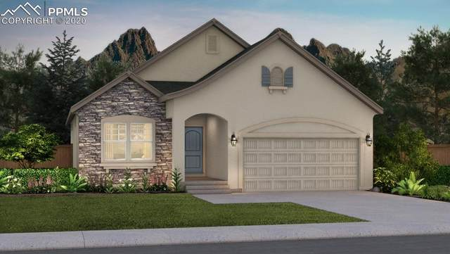11014 Tranquil Water Drive, Colorado Springs, CO 80908 (#4128571) :: The Treasure Davis Team