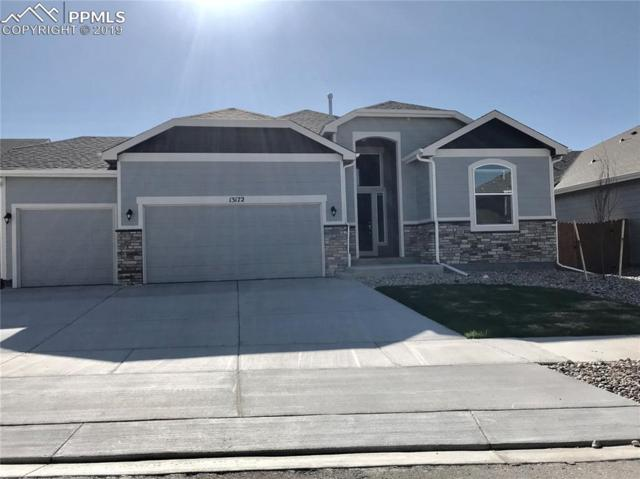 13172 Park Meadows Drive, Peyton, CO 80831 (#4130238) :: Action Team Realty