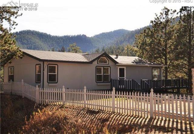133 Crystola Canyon Road, Woodland Park, CO 80863 (#4137553) :: The Treasure Davis Team