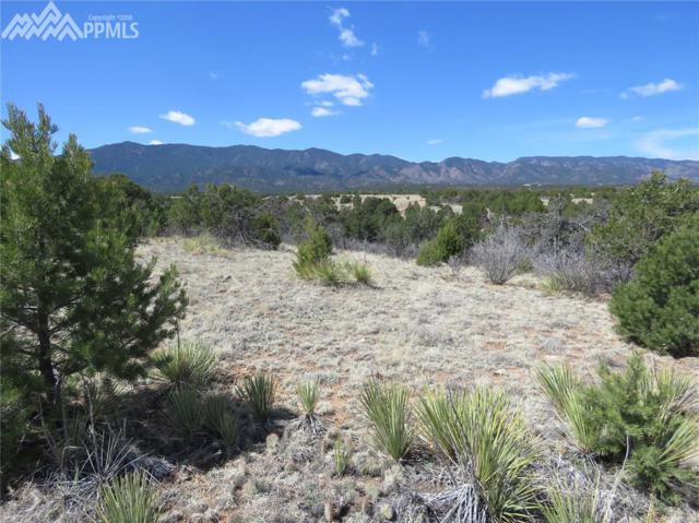 Tom And Jerry Road, Florence, CO 81226 (#4139252) :: Colorado Home Finder Realty