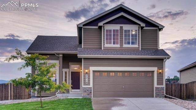 7710 Braxton Drive, Fountain, CO 80817 (#4141752) :: Harling Real Estate