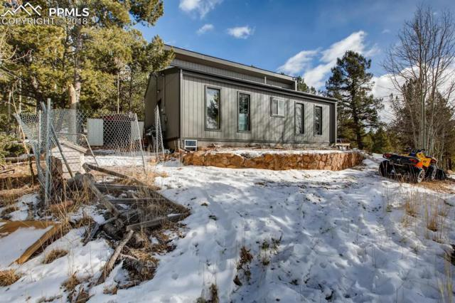 774 Calcite Drive, Divide, CO 80814 (#4143583) :: Action Team Realty