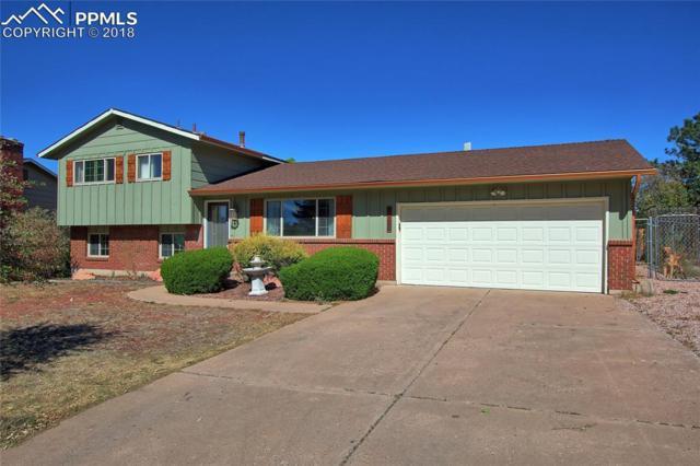 6138 Sapporo Drive, Colorado Springs, CO 80918 (#4143641) :: Fisk Team, RE/MAX Properties, Inc.