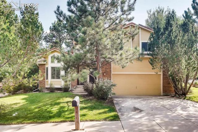785 Popes Valley Drive, Colorado Springs, CO 80919 (#4153410) :: Harling Real Estate