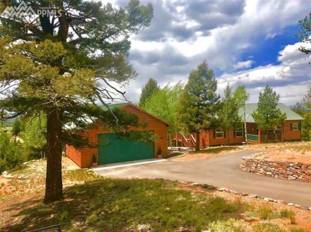23 Idaho Circle, Florissant, CO 80816 (#4153515) :: 8z Real Estate