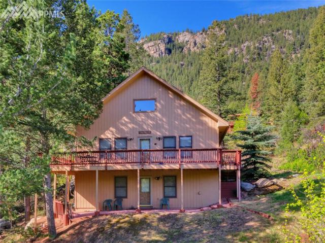 10070 Wildwood Road, Cascade, CO 80809 (#4155527) :: 8z Real Estate