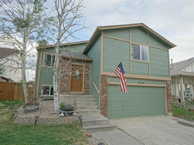 6214 Chantilly Place, Colorado Springs, CO 80922 (#4158552) :: The Treasure Davis Team
